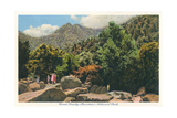 Great-Smoky-Mountain-Nationalpark Kunstdrucke