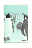 King Penguines Looking Up Prints