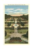 Tulsa Rose Garden Plakát