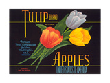 Tulip Apple Label Posters
