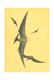 Pterodons Posters