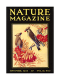 Nature Magazine Cover, Birds Poster
