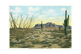 Superstition Mountain, Apache Trail Prints