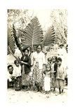 Natives with Giant Leaves Prints