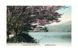 Hirosawa Pond, Kyoto Kunstdrucke