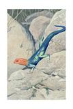 Blue Lizard with Orange Head Kunstdrucke
