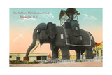 Elephant Hotel, Atlantic City Poster