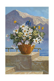 Flower Pot on Seaside Patio Prints