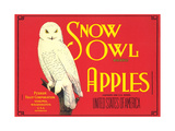 Snow Owl Apple Label Prints