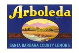 Arboleda Lemon Label Poster