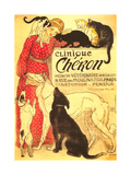 Clinique Cheron, Vet Plakat