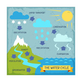 The Water Cycle Plakater av  incomible