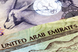 United Arab Emirates Dirham Banknotes in Closeup Photographic Print by Robyn Mackenzie