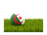 Football with Flag of Algeria Poster by Mikhail Mishchenko