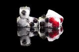 Delicious Fruits Prints by  Eskymaks