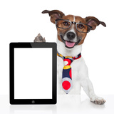 Business Dog Tablet Pc Ebook Posters by Javier Brosch