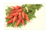 Bunch of Carrots Print