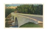 Bridge over Linville River Posters