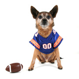 A Chihuahua Dressed Up in a Football Uniform Photographic Print by  graphicphoto