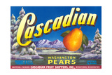 Cascadian Pear Label Posters