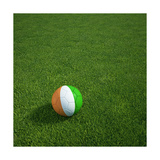 Ivorian Soccerball Lying on Grass Posters by  zentilia