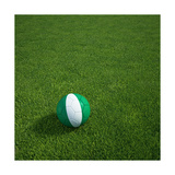 Nigerian Soccerball Lying on Grass Plakater af  zentilia
