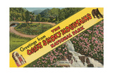 Greetings from Smoky Mountains Print