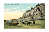 Sheep Going to Market, Billings Prints