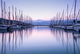 Large Yacht Harbor in Purple Sunset Light Posters by Anna Omelchenko