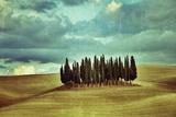 Tuscan Landscape Photographic Print by Oleg Znamenskiy