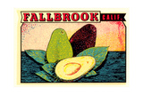 Fallbrook Decal Prints