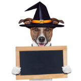 Halloween Placeholder Banner Dog Posters by Javier Brosch