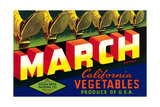 Crate Label for March Vegetables Poster