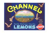 Channel Lemon Label Prints