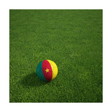 Cameroonian Soccerball Lying on Grass Art by  zentilia