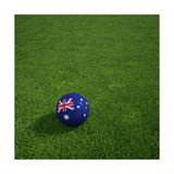 Australian Soccerball Lying on Grass Prints by  zentilia