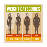 Body Mass Index Retro Poster Posters by  In-Finity