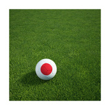 Japanese Soccerball Lying on Grass Prints by  zentilia