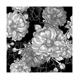 Beautiful Monochrome Rose Background Prints by Varvara Kurakina
