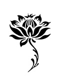 Lotus Prints by  realrock