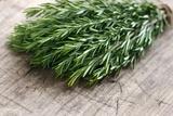 Green Fresh Rosemary Herbs Prints by Anna-Mari West