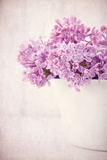 Bouquet of Purple Lilac Flowers on Vintage Background Poster by Anna-Mari West