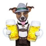 Oktoberfest Dog Posters by Javier Brosch