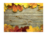 Autumn Background with Colored Leaves on Wooden Board Art by  smaglov
