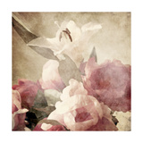 Art Floral Vintage Sepia Background with Pink Peonies and White Lily Print by Irina QQQ