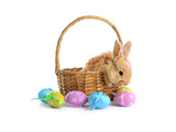 Fluffy Foxy Rabbit in Basket with Easter Eggs Affiches par  Yastremska