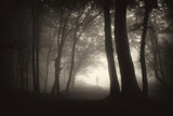 Thick Fog in a Dark Forest with Silhouette Posters by  ando6