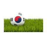 Football with Flag of Korea South Poster by Mikhail Mishchenko