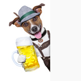 Oktoberfest Dog Photographic Print by Javier Brosch