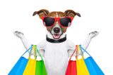 Shopping Dog Print by Javier Brosch